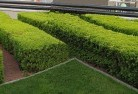 Banyule Commercial landscaping 1